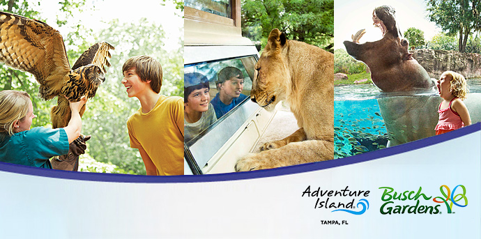 Busch Gardens Tampa Bay Adventure Island
