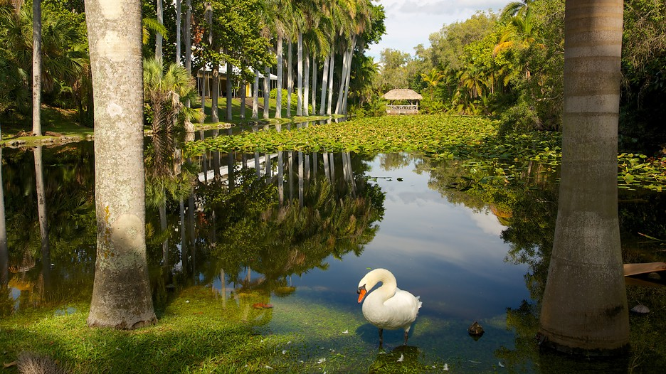 Fort Lauderdale Vacation Packages Book Cheap Vacations