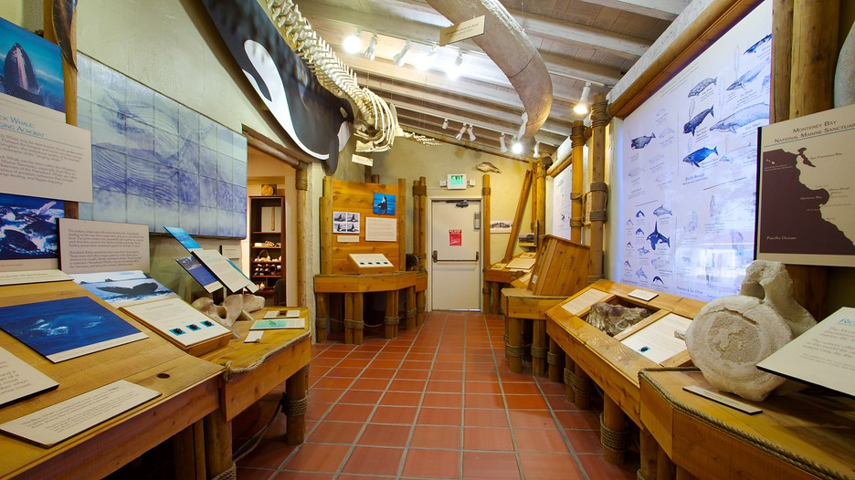 Pacific Grove Museum Of Natural History In Monterey